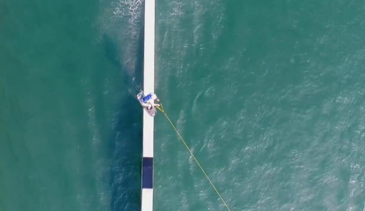 De wakeboard video dump 16 februari 2018