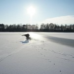 ice boarding